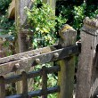 Stock Photo: Detail of decayed church gate
