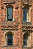 Tudor Windows — 图库照片