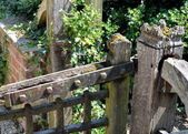 Detail of decayed church gate — Stock Photo