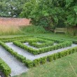 Small Hedge Maze — Stock Photo