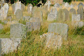 Large group of gravestones in grass — Stock Photo