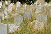 Rows of gravestones in grass — Stock Photo