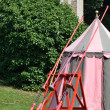 Row of jousting lances on tent — Foto de stock #30600057