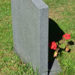 Gravestone with flowers — Stock Photo #30823365