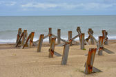 Old posts going out to sea — Stock Photo