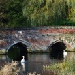 Red brick bridge with swans — Stock Photo