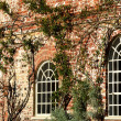 Stock Photo: Arched white windows