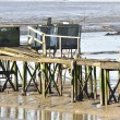 Ramshackle pier — Stock Photo #40181135