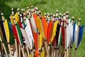 Colorful arrow flights — Stockfoto