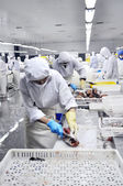 Salmon processing plant — Stockfoto
