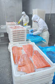 Salmon processing plant — Stock Photo