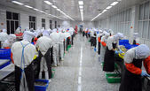 Production line workers — 图库照片
