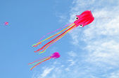 Octopus kite — Stock Photo