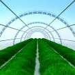 Long greenhouse - Stock Photo