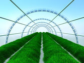 Long greenhouse — Stock Photo