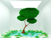 Tree in white room — Stock Photo