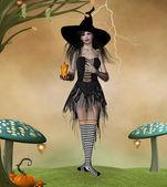 Halloween is coming — Stock Photo