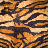 Tiger fur texture — Stock Photo