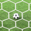 Football on green grass in front of the net — Stock Photo