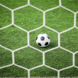 Royalty-Free Stock Photo: Football on green grass in front of the net