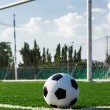 Soccer ball on green grass in front of goal net — Stock Photo #16318799
