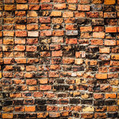 Grunge stone wall texture for background — Stock Photo