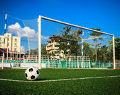 Soccer ball on green grass in front of goal net — Стоковое фото