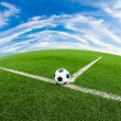 Soccer ball on green grass field — Stockfoto