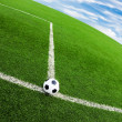 Stock Photo: Soccer ball on green grass field