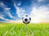 Soccer ball on golf tee — Stock Photo
