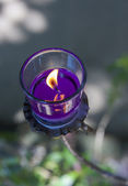 Focus on cup of purple candle in the garden — Stock Photo