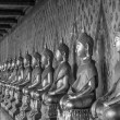 Arrange of buddha statue in black and white — Stock Photo