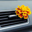 Stock Photo: Natural car air freshener