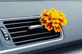 Natural car air freshener — Stock Photo