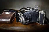 Antique bellows camera with original leather case — Stock Photo