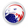 EAGLE WITH AMERICAN FLAG — Stock Photo #3778738
