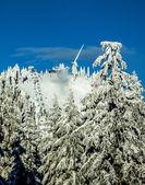 Ski season on Grouse Mountain — Stockfoto