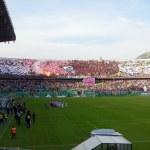 Palermo, Italia - 9 novembre 2013 - noi citta di palermo vs trapani calcio - serie b — Foto Stock #35244855