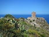 Altavilla Milicia - The landscape of Torre Normanna — Stock Photo