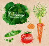 Vegetables watercolor cabbage, carrot, tomato, peas kraft — Stock Vector
