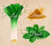 Spices herbs watercolor leeks, basil, turmeric kraft — Stock Vector