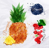 Fruit watercolor pineapple, bramble, red currant — Stock Vector