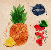 Fruit watercolor pineapple, bramble, red currant kraft — Stock Vector