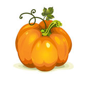 Vector pumpkin vegetable fruit — Vettoriale Stock