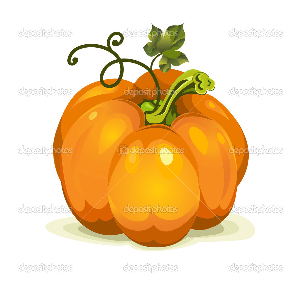 Vector pumpkin vegetable fruit.  Stock Vector #12722023