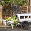 Horse Drawn Calesa, Manila - Philippines — Stock Photo