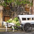 Horse Drawn Calesa, Manila - Philippines — Stock Photo #32874729