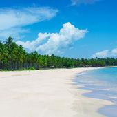 Tropical beach, El Nido, Palawan - Philippines — Stock Photo