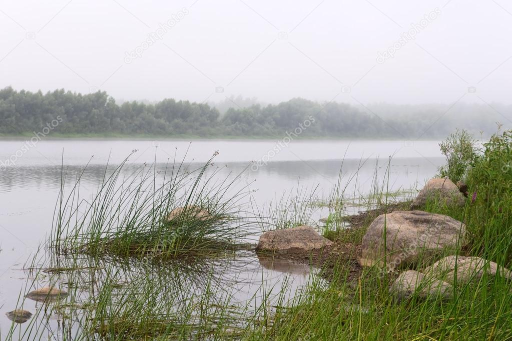 Fog over the river. Previously, summer morning. — Stock Photo #12243789