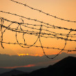 Barbed wire on sunset sky background — Stock Photo